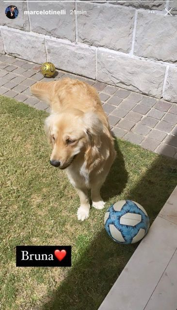 Mirá quién cuida a Bruna, la perra de Juanita Tinelli, mientras está de vacaciones