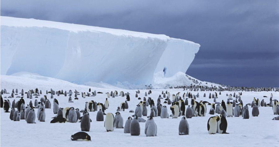 1204_iceberg