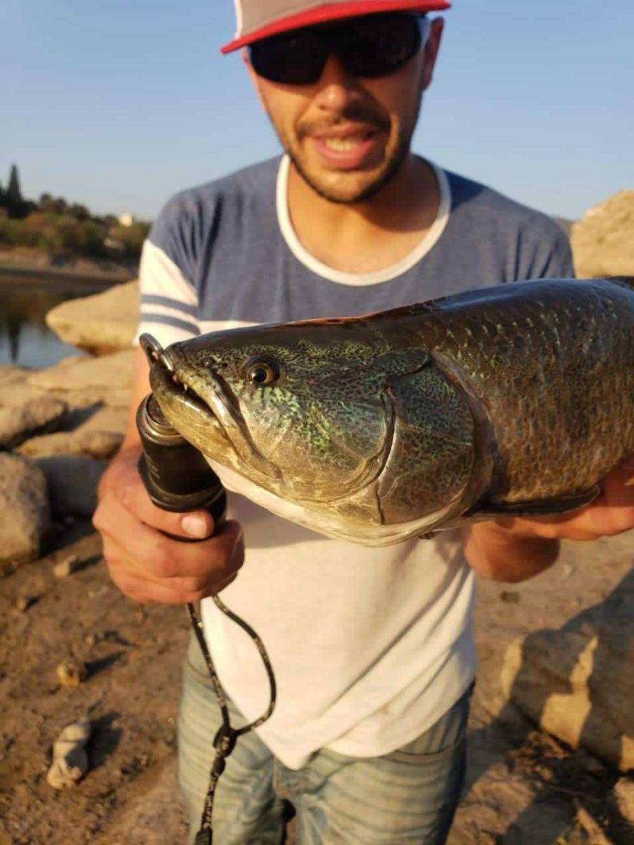 1012_pesca_urbana_tarariras_cordoba