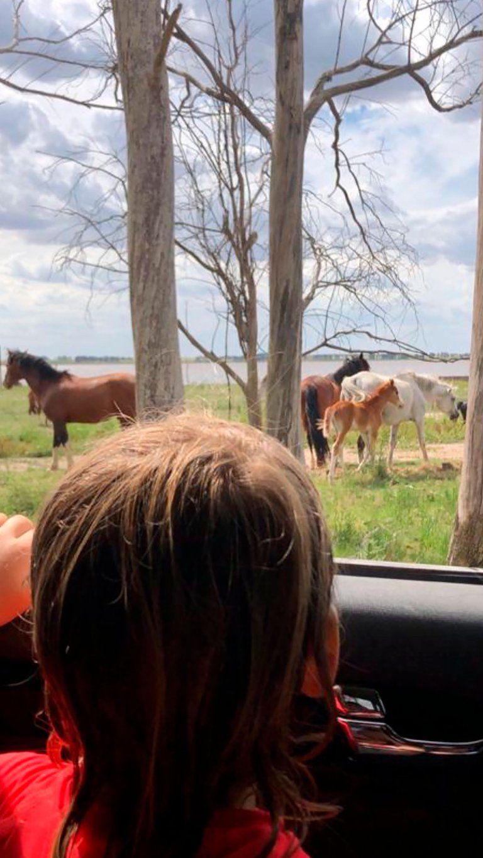 Entre arena, mar y caballos: las soñadas vacaciones de Germán Martitegui con Lorenzo y Lautaro