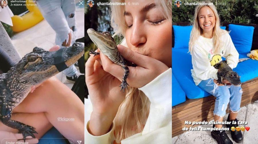 Stefi y Chantal Roitman junto al reptil de la polemica