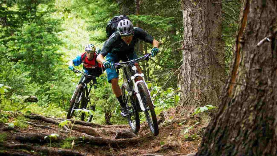 2101_mountain_bike