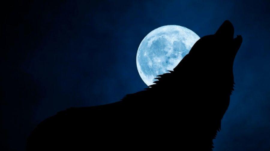 Luna de Lobo Astronomía