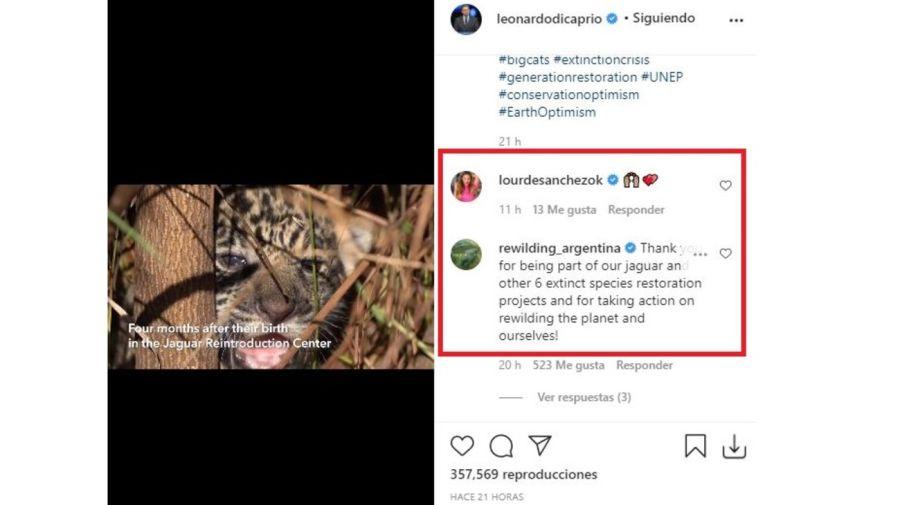 Leonardo DiCaprio elogio a Argentina