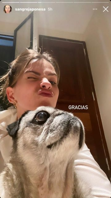 El mal momento de la China Suárez: despidió a una de sus mascotas