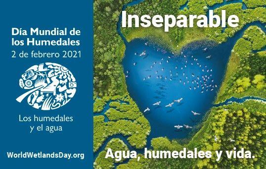 0202_humedales