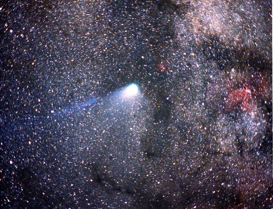 0209_cometa halley