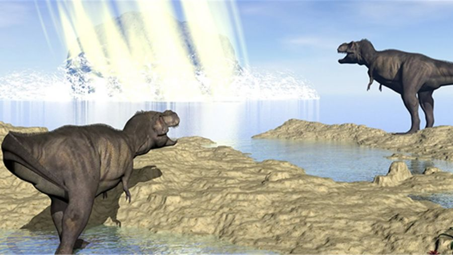 0218_dinosaurios