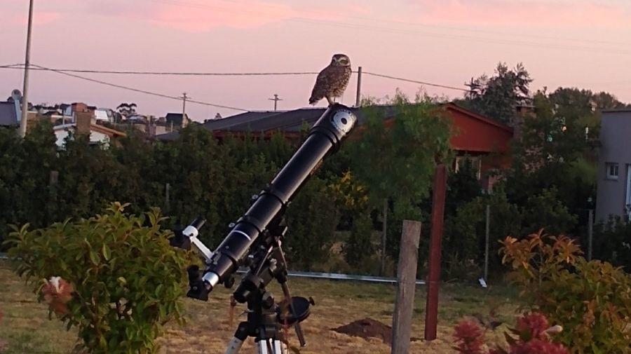 0219_astroturismo