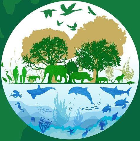 0303_día mundial vida silvestre