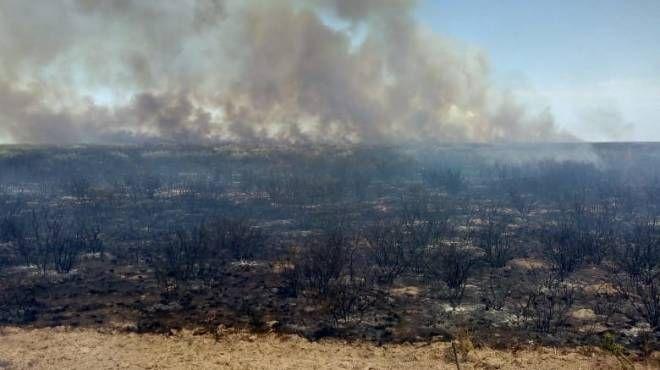 0304_incendios forestales
