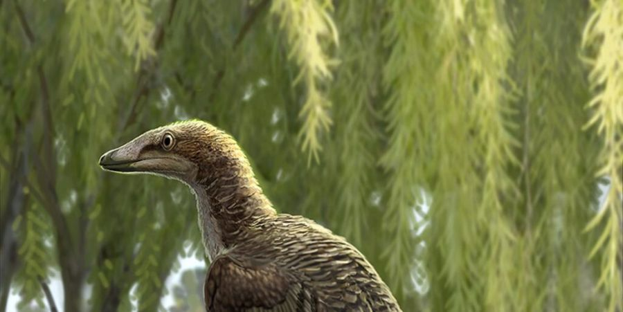 0310_dinosaurioespaña