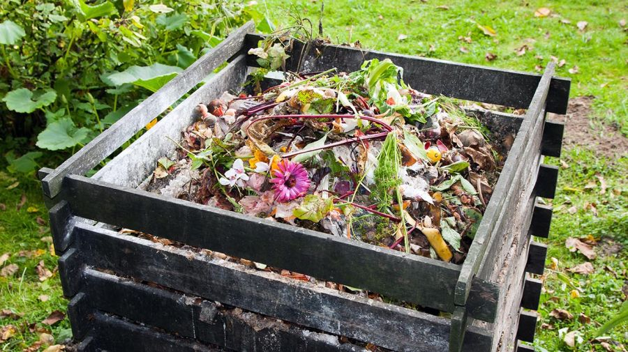 Cómo preparar un compost en casa