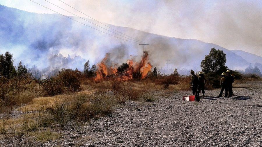 0323_incendios forestales