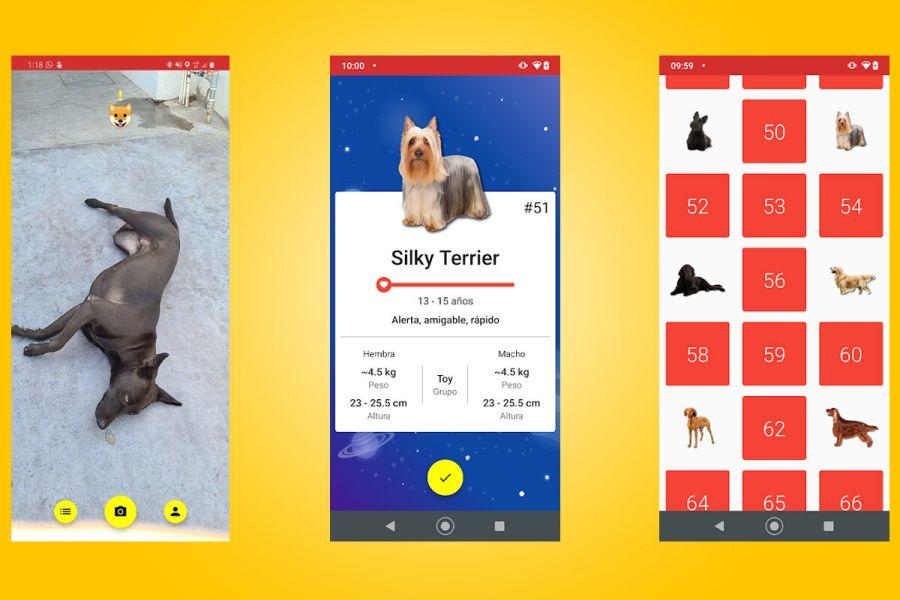 0412_aplicación perros