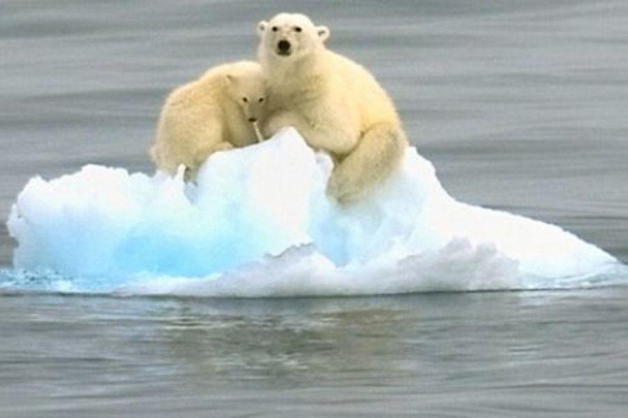 0415_hielo antartida