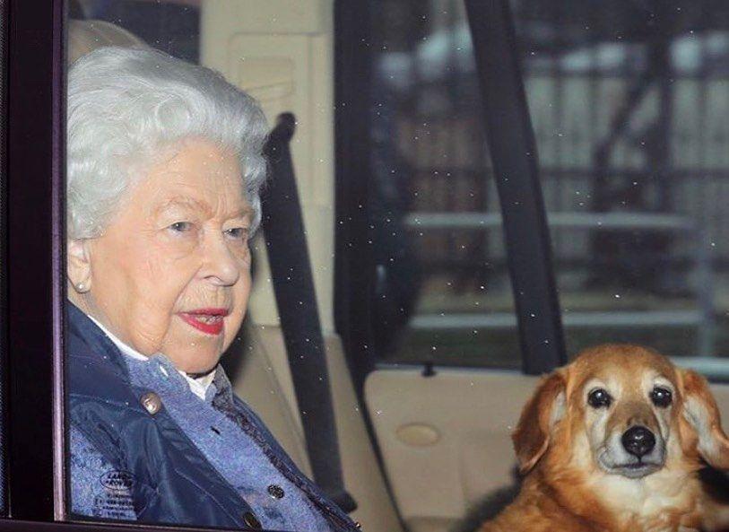 Mirá qué le regalaron a la reina Isabel II para animarla