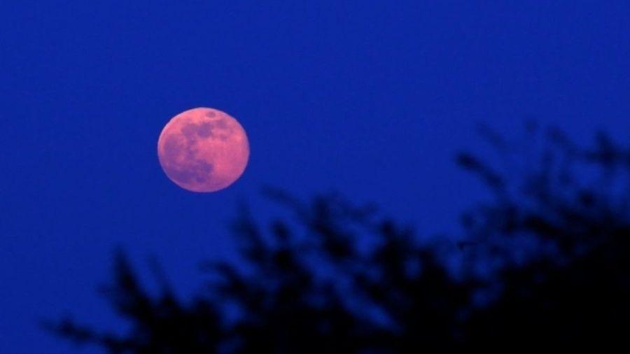 0426_superluna rosa