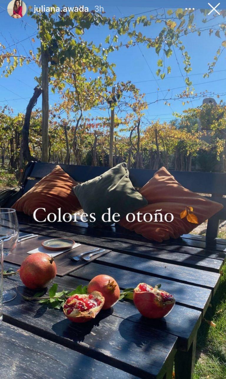 Sin Muricio Macri, así son las vacaciones de Juliana Awada en Mendoza