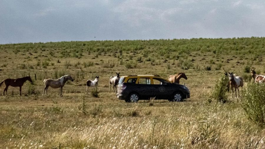 Camioneta taxi de Javier Pereyra 20210506