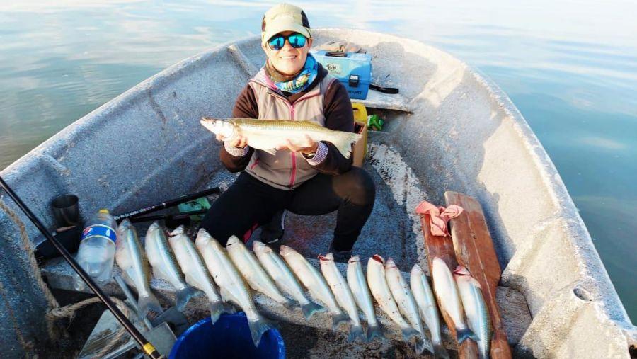 3105_pesca