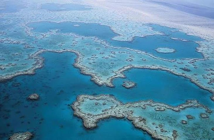 0601_arrecifes