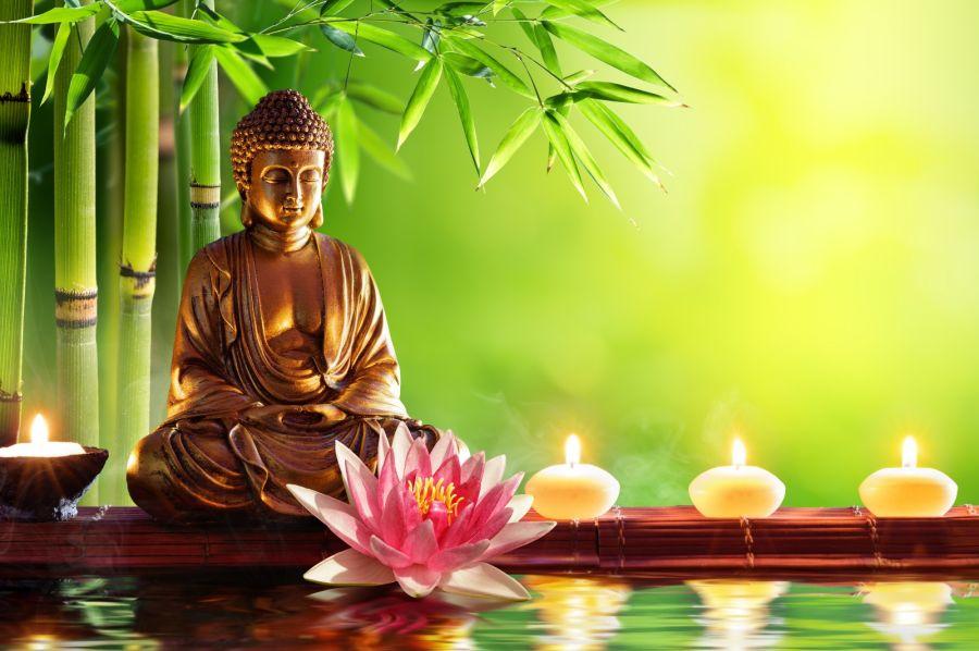 Bompu Zen: La terapia del bienestar físico y emocional