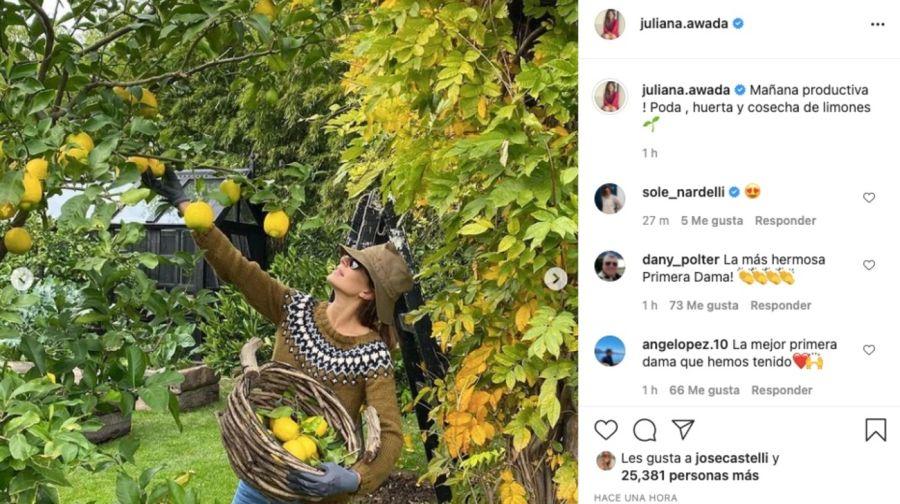 Juliana Awada mostró parte de la cocina y jardín de sumansiónen San Isidro
