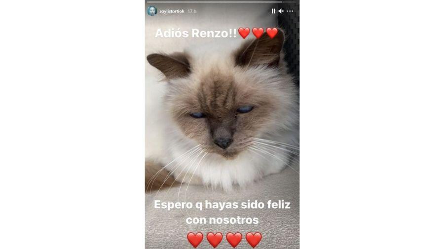 Muerte Renzo gato Jose Maria Listorti