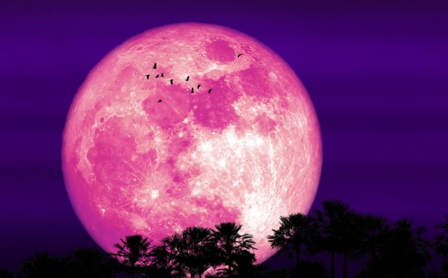 0624_superluna fresa