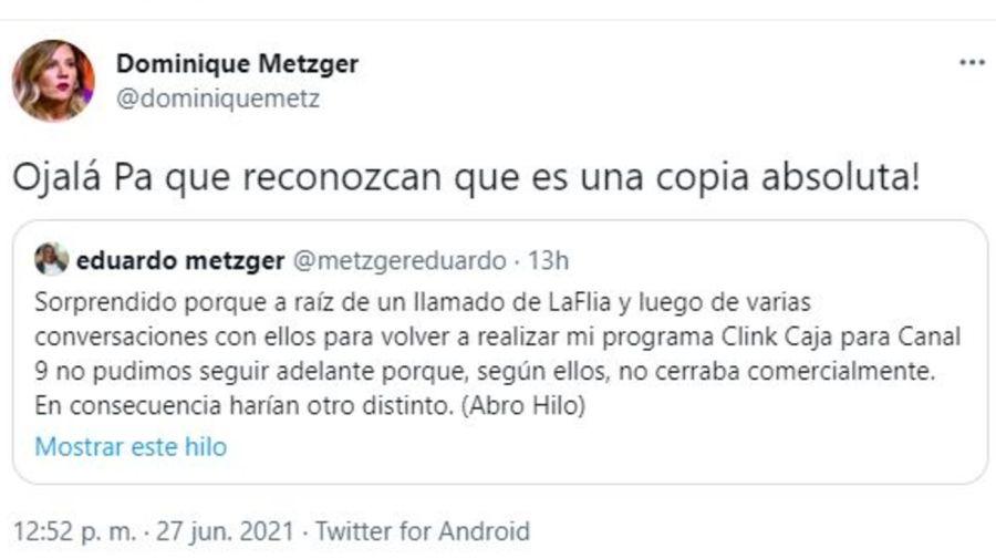 Mensaje de Dominique Metzger sobre el plagio de LaFlia