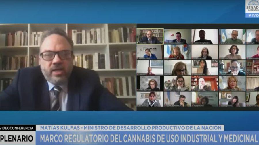 Matías Kulfas llevó el proyecto para producir cannabis medicinal y cáñamo industrial