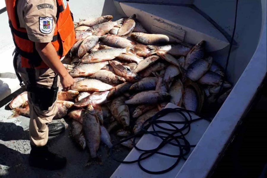 0207_pesca