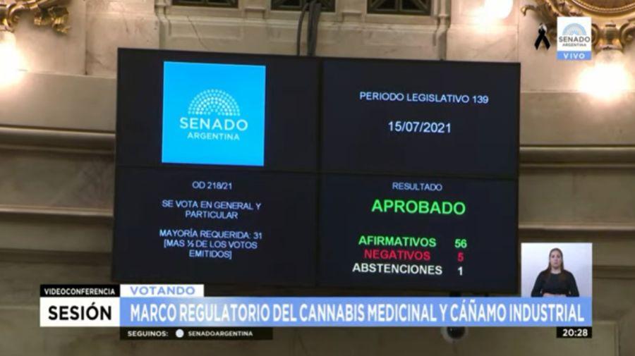 El Senado dio media sanción a la ley para producir cannabis medicinal e industrial