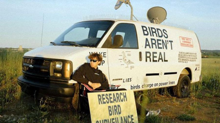 Birds are not real 20210719