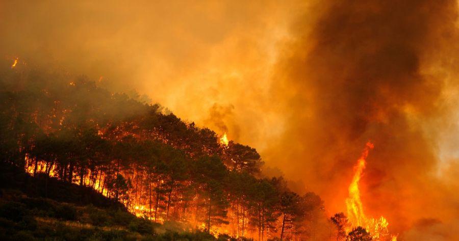 0802_incendios españa