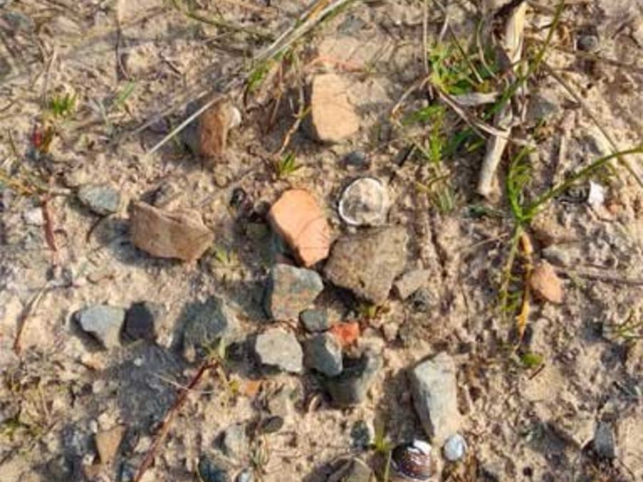 0805_restos arqueológicos