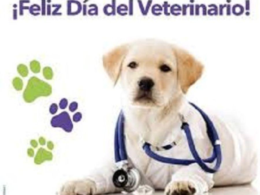 0806_día del veterinario