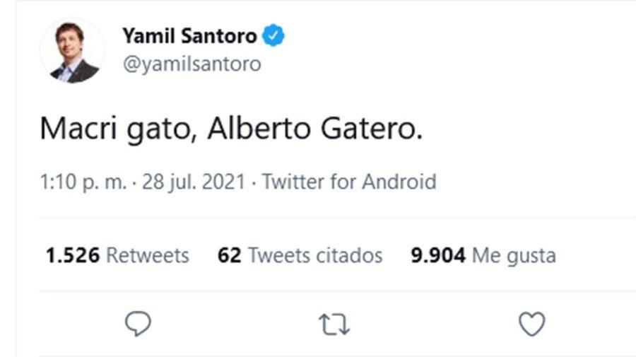 Macri gato, Alberto Gatero. 20210812