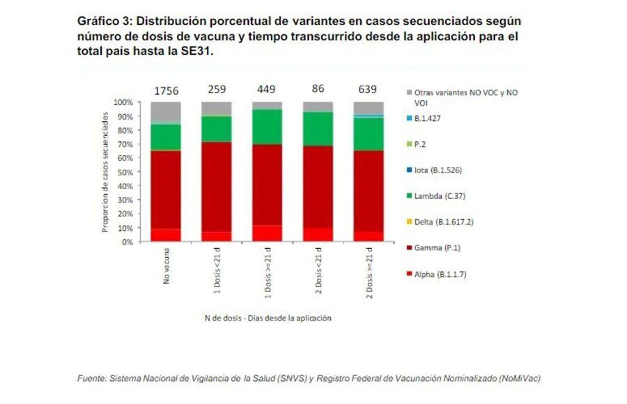 gráficos del informe técnico de agosto sobre la situación de nuevas variantes SARS-CoV-2 en Argentina. 20210819
