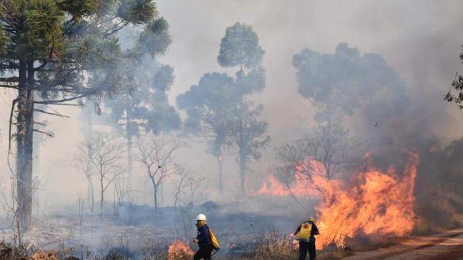 0820_incendiosforestales