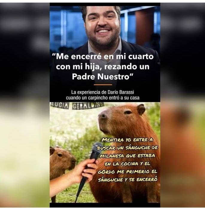 Darío Barassi reveló la verdad sobre su encuentro con los carpinchos