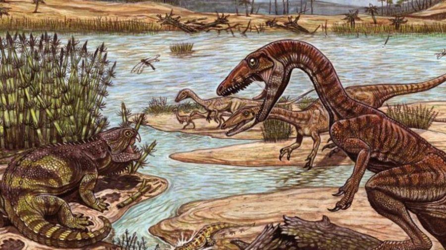 0826_reptil