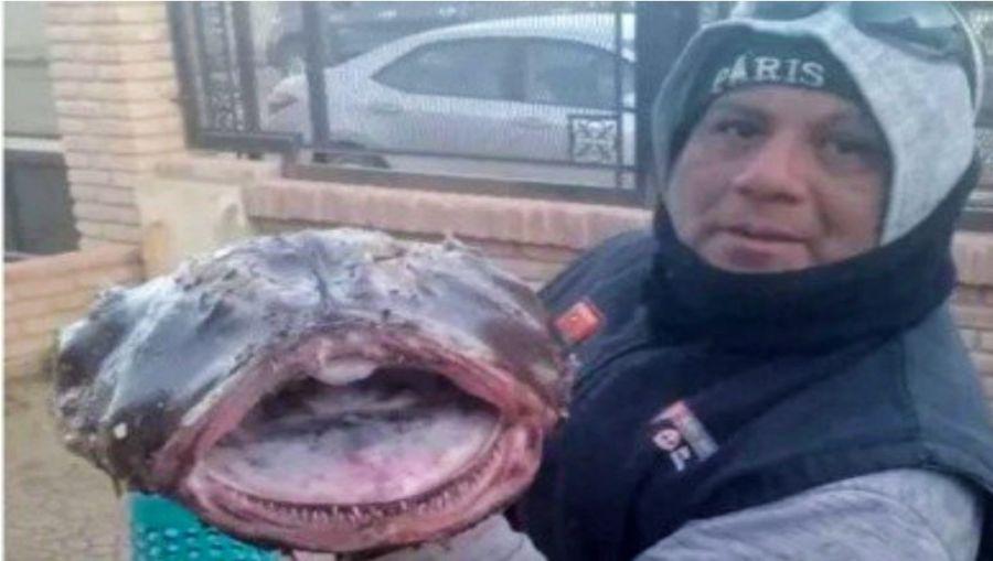 2608_pesca