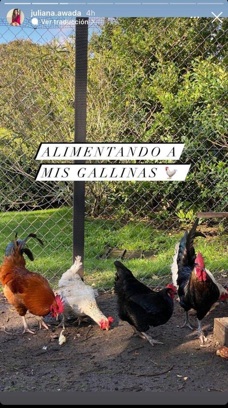 Juliana Awada publicó una tierna foto junto a Mauricio Macri