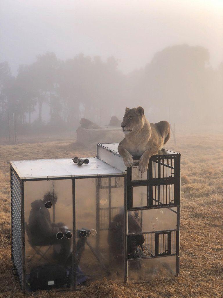 0907_zoo australia