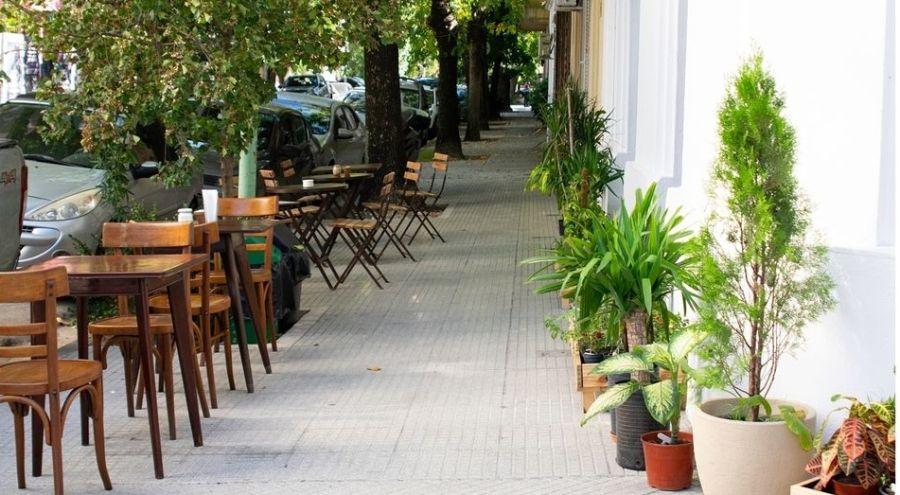 Cosecha Cafe de especialidad