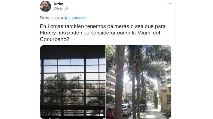 Palmeras en Lomas de Zamora