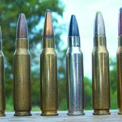 Distintas variantes de caza