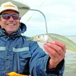 Pesca  Pejerrey emb-123